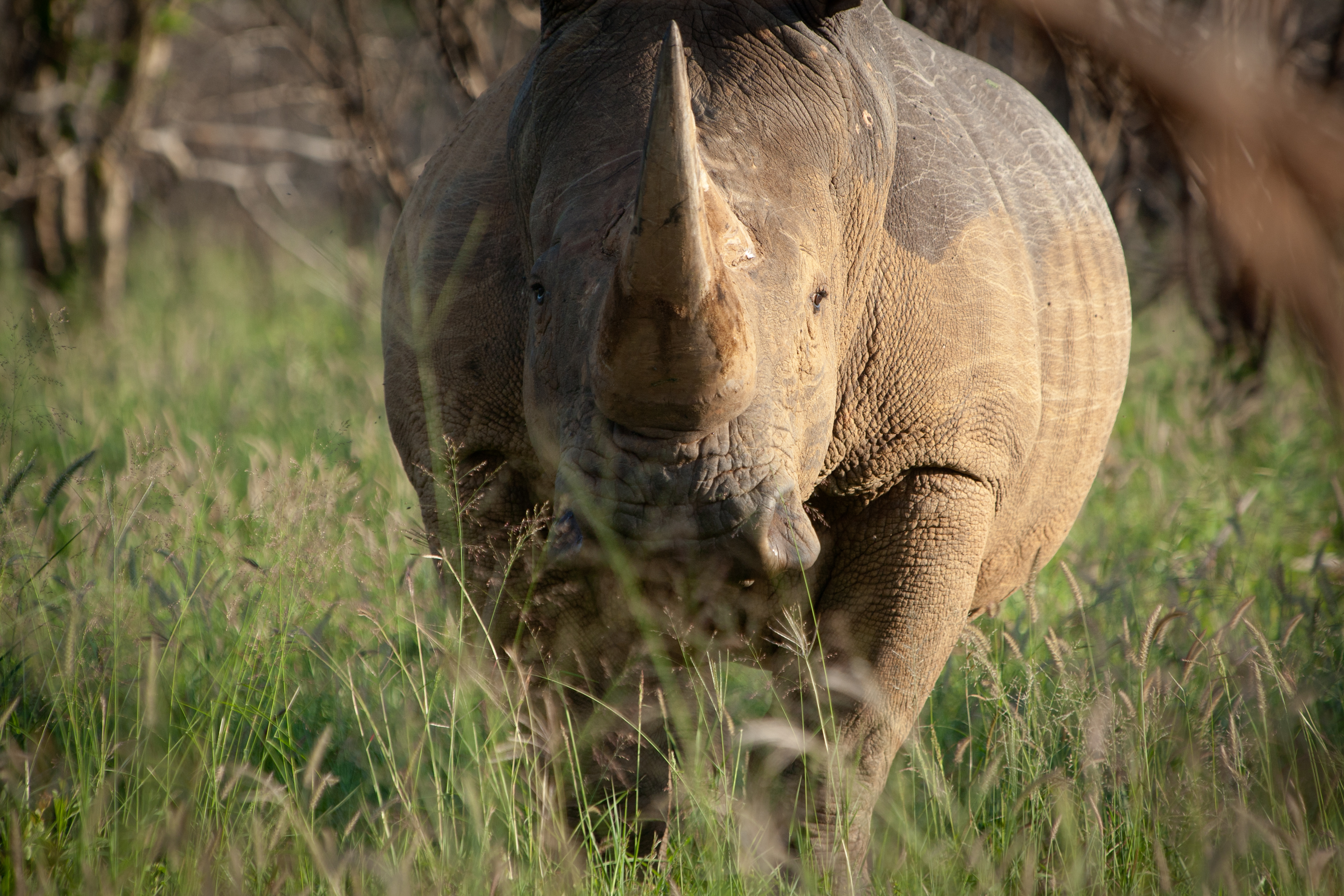 Sudafrica-263